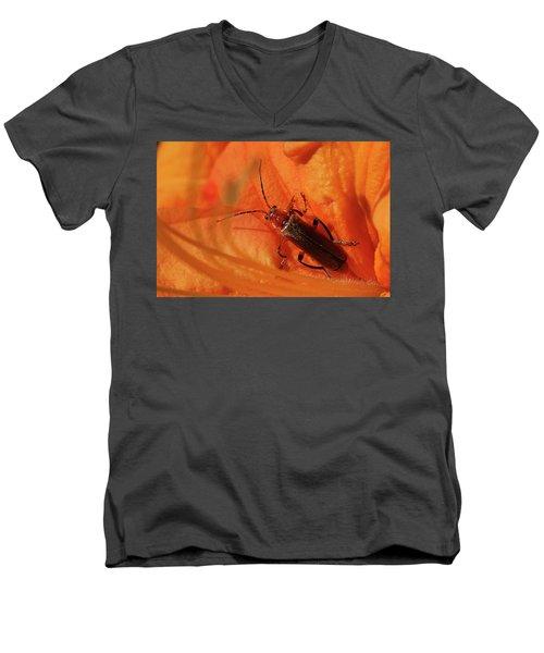 Soldier Beetle Men's V-Neck T-Shirt