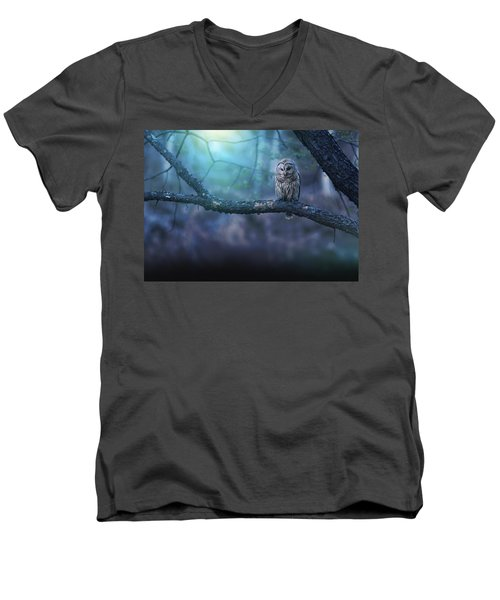 Solitude - Landscape Men's V-Neck T-Shirt