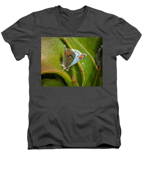 Sonoran Blue Men's V-Neck T-Shirt