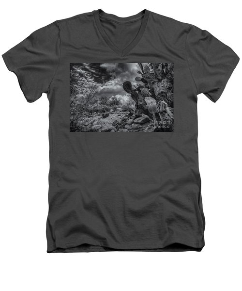 Men's V-Neck T-Shirt featuring the photograph Sonoran Desert 15 by Mark Myhaver