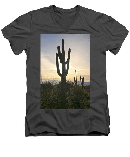 Sonoran Desert View Men's V-Neck T-Shirt