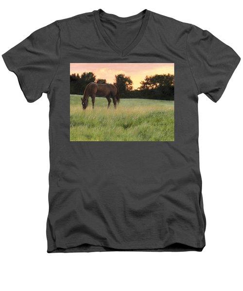 Sorrel Beauty Men's V-Neck T-Shirt