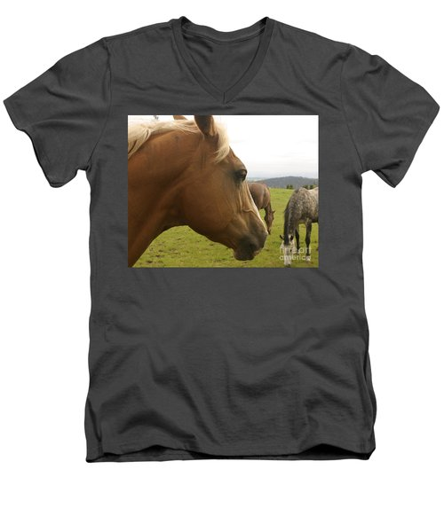 Men's V-Neck T-Shirt featuring the photograph Sorrel Horse Profile by Belinda Greb