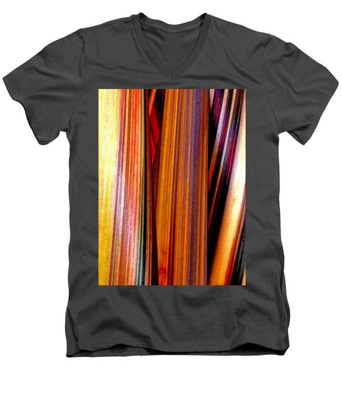 Soulful  Men's V-Neck T-Shirt