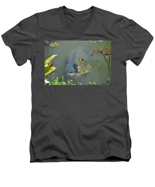 #south American Pacu Men's V-Neck T-Shirt