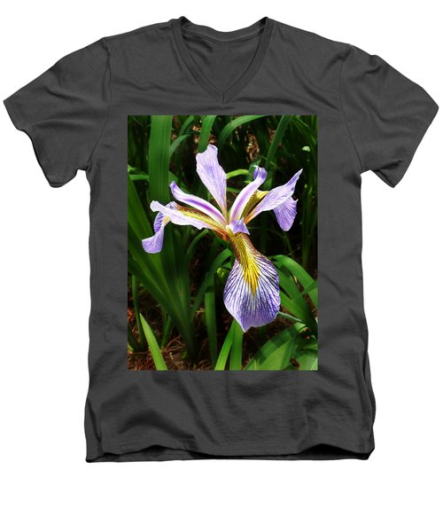 Southern Blue Flag Iris Men's V-Neck T-Shirt