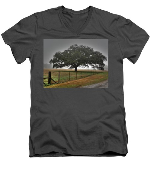 Spanish Oak I Men's V-Neck T-Shirt