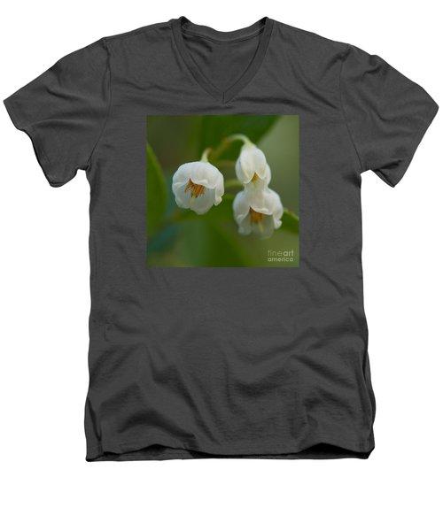 Sparkleberry Trio Men's V-Neck T-Shirt by Paul Rebmann