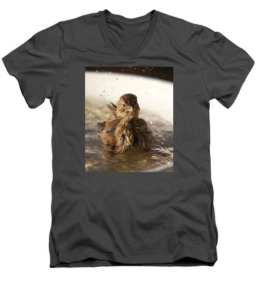 Sparrow Bathing Men's V-Neck T-Shirt