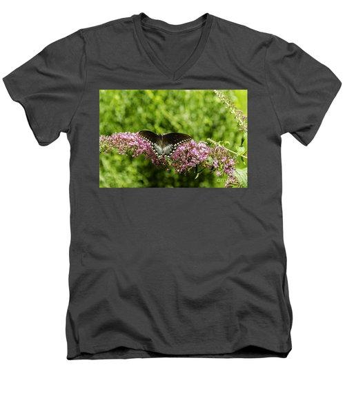 Spicebush Swallowtail Men's V-Neck T-Shirt