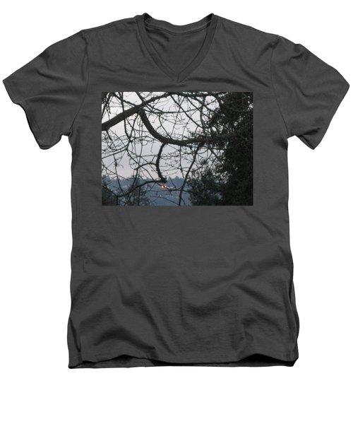 Spider Tree Men's V-Neck T-Shirt by David Trotter