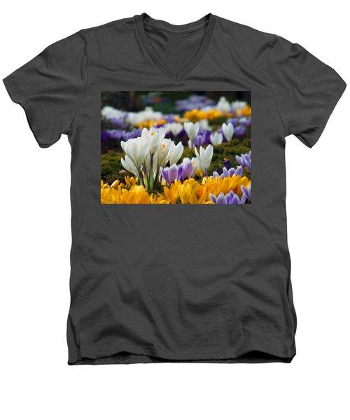 Spring Crocus Men's V-Neck T-Shirt by Dianne Cowen