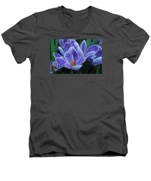 Men's V-Neck T-Shirt featuring the photograph Spring Crocus by Julie Andel