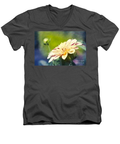 Spring Dream Jewel Tones Men's V-Neck T-Shirt