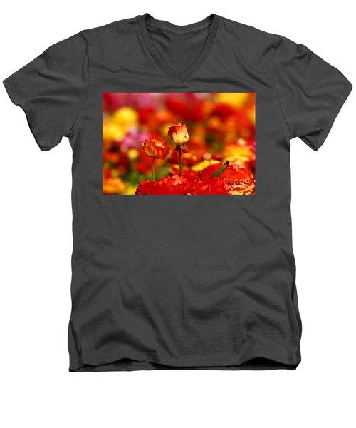 Carlsbad Spring Men's V-Neck T-Shirt