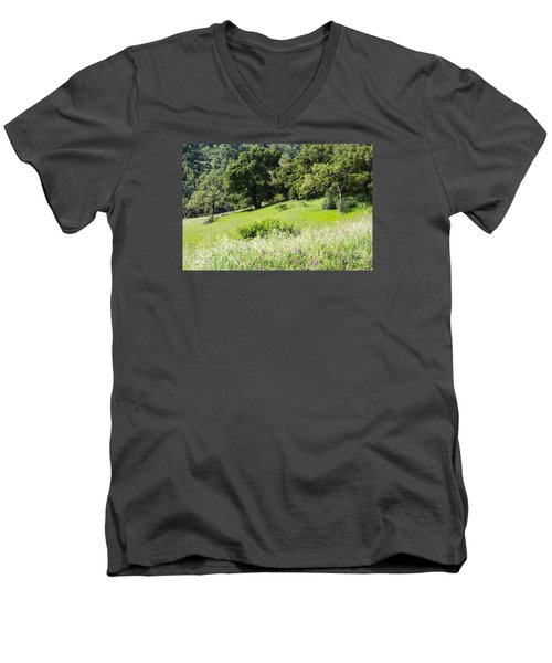 Men's V-Neck T-Shirt featuring the photograph Spring Hike by Suzanne Luft