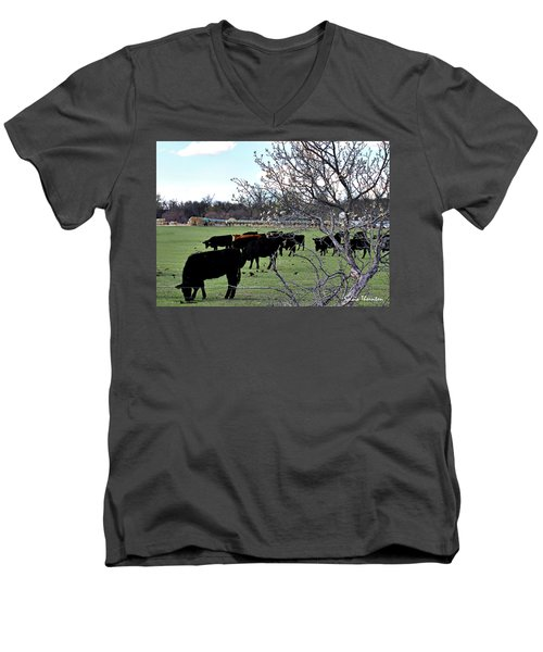 Spring In The Hay Meadow Men's V-Neck T-Shirt