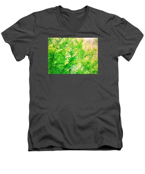 Spring Cypress Beauty Men's V-Neck T-Shirt by Belinda Lee