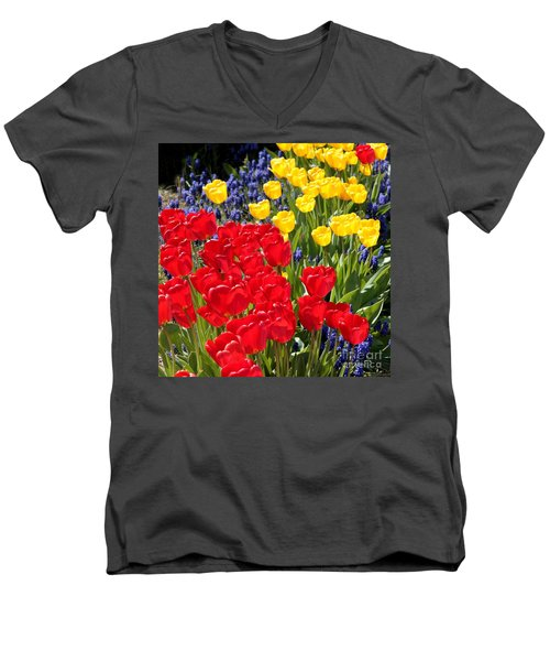 Spring Sunshine Men's V-Neck T-Shirt