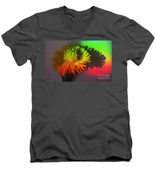 Spring Through A Rainbow Men's V-Neck T-Shirt