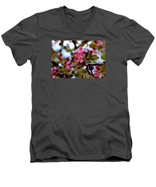 Spring1 Men's V-Neck T-Shirt
