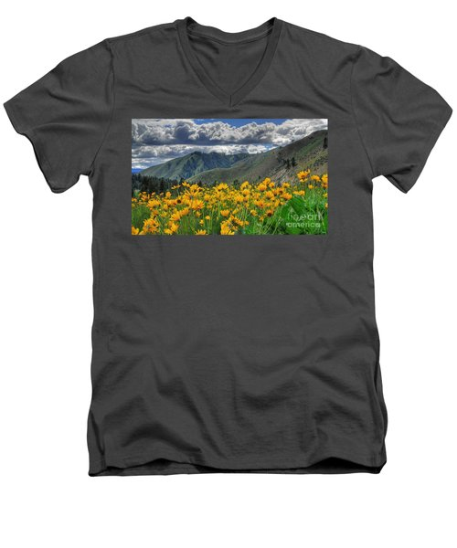 Springtime At Gallagher Men's V-Neck T-Shirt