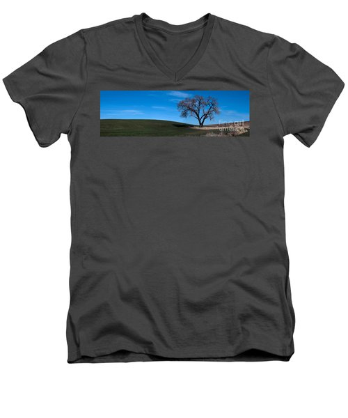 Springtime In The Palouse Men's V-Neck T-Shirt