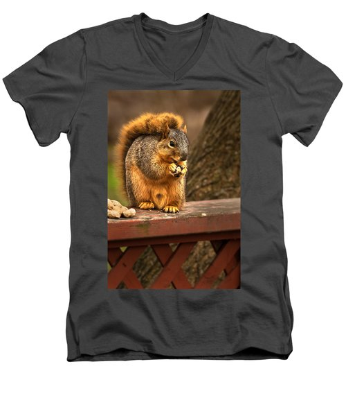 Squirrel Eating A Peanut Men's V-Neck T-Shirt