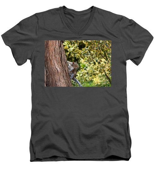 Men's V-Neck T-Shirt featuring the photograph Squirrel by Kate Brown