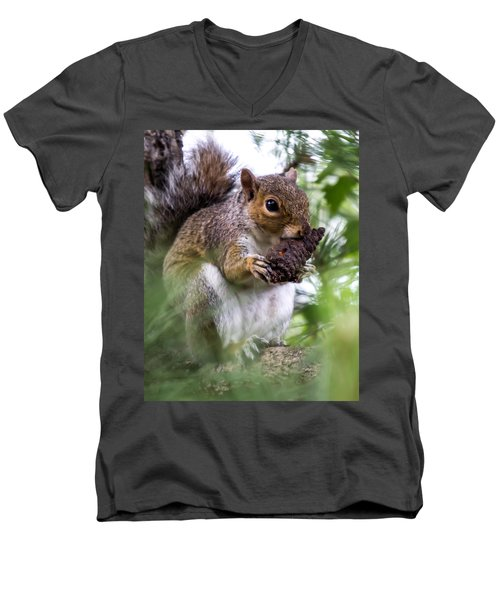 Squirrel With Pine Cone Men's V-Neck T-Shirt