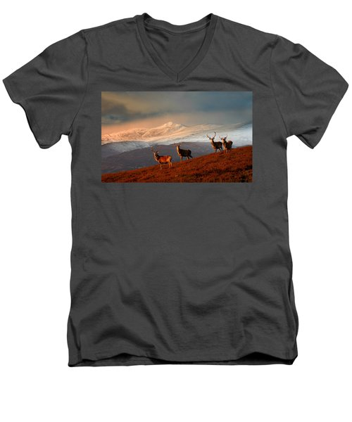 Stags At Strathglass Men's V-Neck T-Shirt
