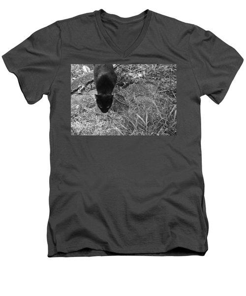 Stalking Cat Men's V-Neck T-Shirt by Melinda Fawver
