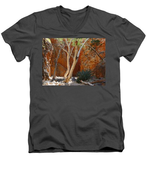 Standley Chasm Men's V-Neck T-Shirt by Evelyn Tambour