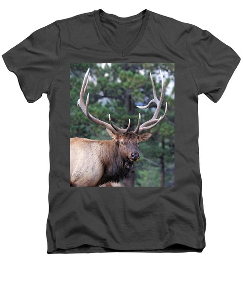 Men's V-Neck T-Shirt featuring the photograph Stare Down by Shane Bechler