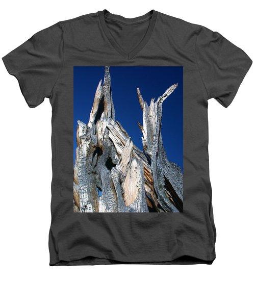Steeple Roots Men's V-Neck T-Shirt