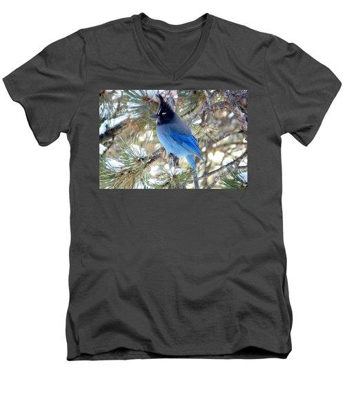 Steller's Jay Profile Men's V-Neck T-Shirt by Marilyn Burton