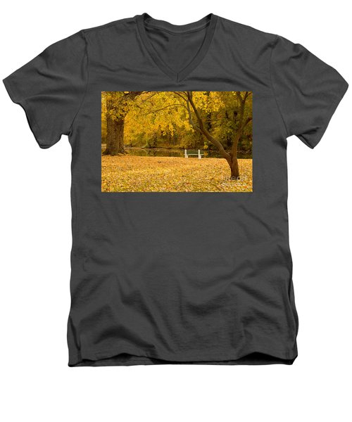 Stewart Park Ithaca Men's V-Neck T-Shirt