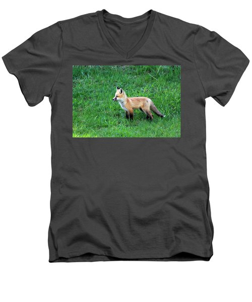 Still A Pup Men's V-Neck T-Shirt