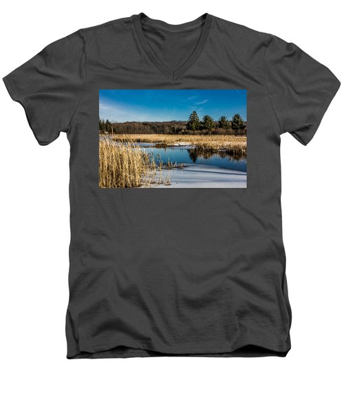 Stillness Men's V-Neck T-Shirt by Sara Frank