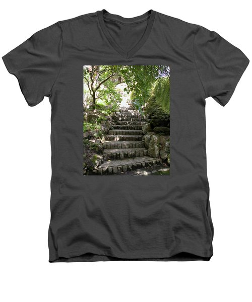 Stone Steps Men's V-Neck T-Shirt