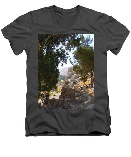 Stony Paths Men's V-Neck T-Shirt