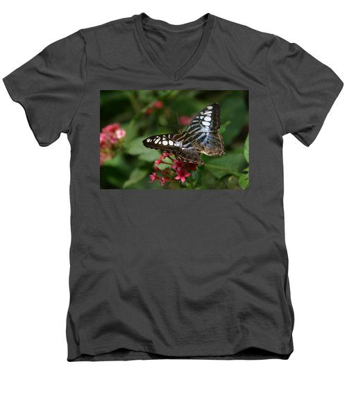 Men's V-Neck T-Shirt featuring the photograph Stopping By by Denyse Duhaime