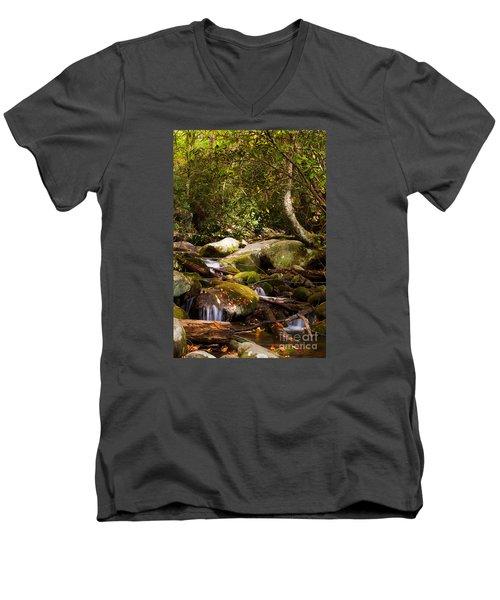 Stream At Roaring Fork Men's V-Neck T-Shirt by Lena Auxier