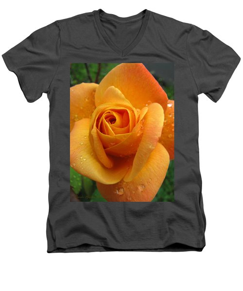 Men's V-Neck T-Shirt featuring the photograph Strike It Rich - My Summer Garden by Brooks Garten Hauschild
