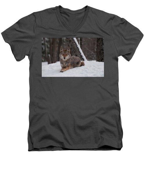 Striking The Pose Men's V-Neck T-Shirt