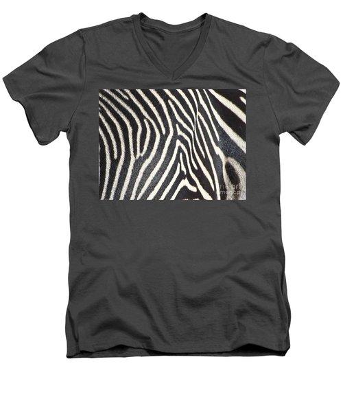 Stripes And Ripples Men's V-Neck T-Shirt