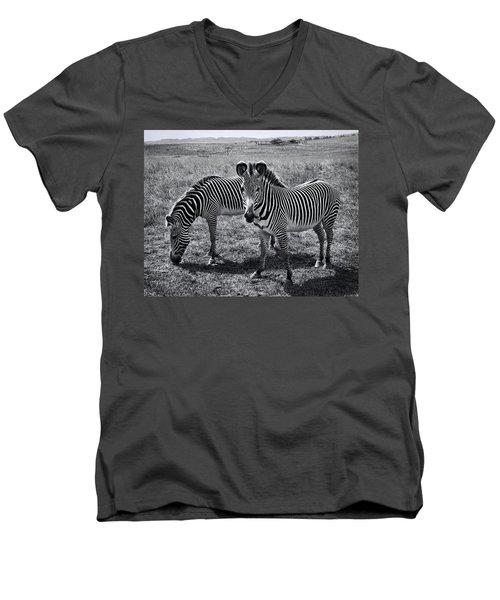 Stripes Duo Men's V-Neck T-Shirt
