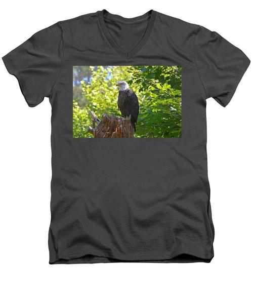 Men's V-Neck T-Shirt featuring the photograph Stumped by David Porteus