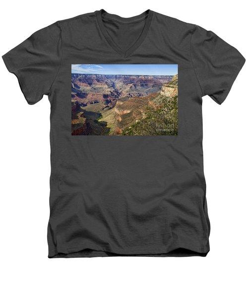 Natures Layer Cake Men's V-Neck T-Shirt