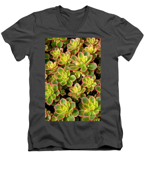 Succulent Glow Men's V-Neck T-Shirt by Suzanne Oesterling